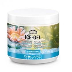 ICE - GEL