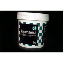 Allyumhorse
