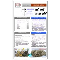 Horse SUPER ENERGY
