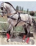enganches complementos caballos hípica equitación montar Galicia