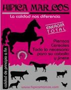 Racao de cavalos Feiraco-Hipica Marcos